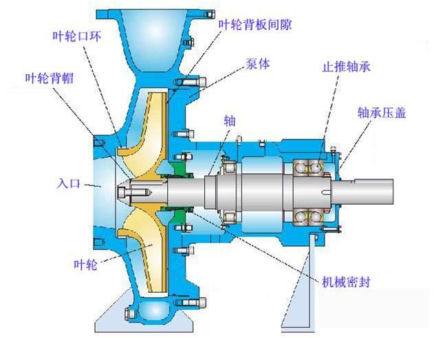 管道泵离心泵结构工作原理图